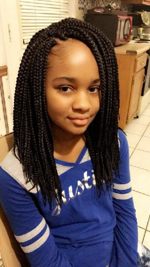 Little Black Girls 40 Braided Hairstyles