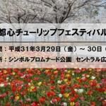 関東最大 300品種 20万球のチューリップ!! 臨海副都心チューリップフェスティバル2019