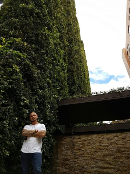 largest vertical garden This Living Building in Bogota Is the World's Largest