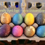 Naturally Dyed Eggs - www.OddsandEvans.com