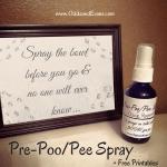 Homemade Pre Poo Pee Spray Bathroom No Stink