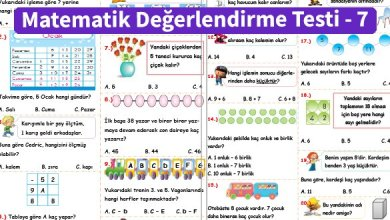 Photo of İlkokul 1.Sınıf Matematik Değerlendirme Testi – 7