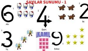 ilkokul_1_Sinif_Sayilar_sunum_1_Ornekilkokul_1_Sinif_Sayilar_sunum_1_Ornek