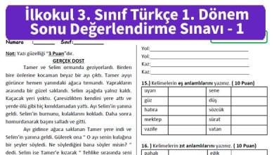 Photo of İlkokul 3. Sınıf Türkçe 1. Dönem Sonu Değerlendirme Sınavı – Pdf İndir