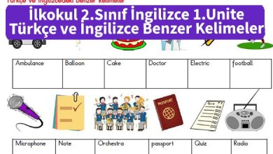 Photo of İlkokul 2.Sınıf İngilizce 1.Unite Türkçe ve İngilizce Benzer Kelimeler – Pdf İndir