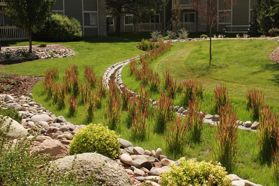 HOA Drainage Landscape Renovation