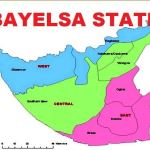 Chinese firm to invest in Bayelsa, pledges to train Lab scientists –manager