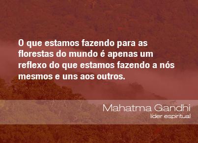 O que estamos fazendo para as florestas do mundo é apenas um reflexo do que estamos fazendo a nós mesmos e uns aos outros. - Mahatma Gandhi, líder espiritual.