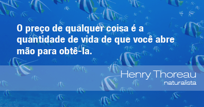 O preço de qualquer coisa é a quantidade de vida de que você abre mão para obtê-la. - Henry Thoreau, naturalista.