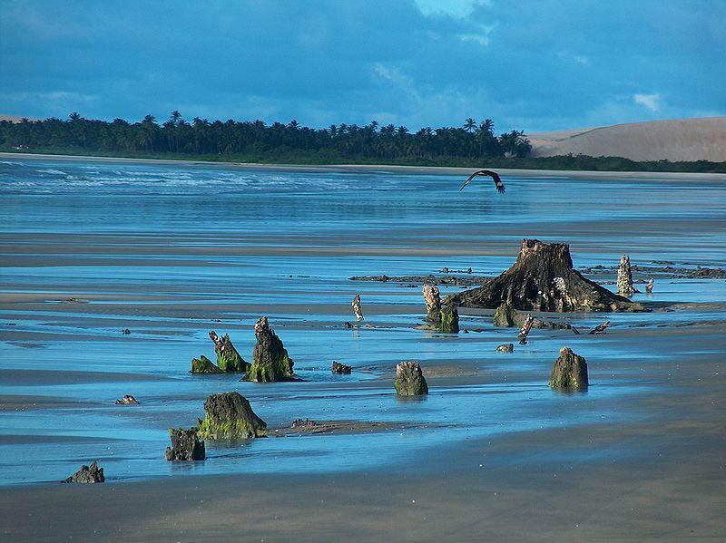 Praia do Mangue Seco no Parque Nacional de Jericoacoara. Foto: Aldízio Filho