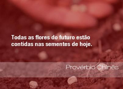 Todas as flores do futuro estão contidas nas sementes de hoje. - Provérbio Chinês