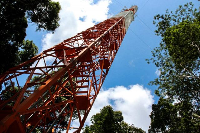 A construção da torre ATTO já está com 200 metros de altura. Foto: INPA