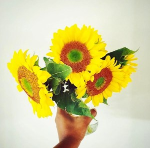 Sunflowers in Hand by Maneo Mohale