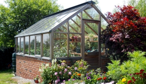 Growing Plants In A Greenhouse Tips For Gardening