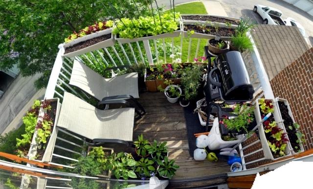 Beautify The Balcony With Plants 24 Ideas For Balcony Design Interior Design Ideas Ofdesign