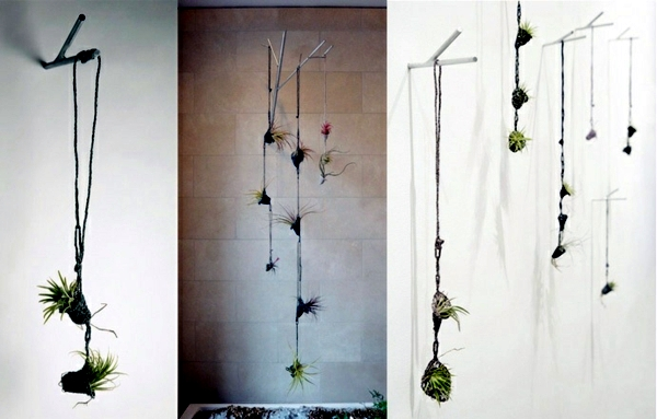 Wall Hanging Planters Indoor