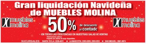 Gran liquidacion navideña de Muebles Molina - 19nov13