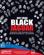 Hoy GRAN Black Jaguar - 29nov13
