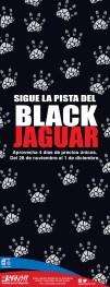 Jaguar Sportic promociones BLACK Friday 2013