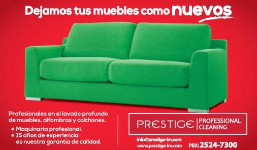Professional CLEANING Prestige muebles como nuevos - 26nov13