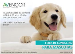 AVECOR veterinaria feria de consultas 22 marzo