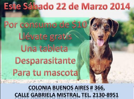 clinica veterinaria sabado 22 marzo 2014 gratis ua tableta desparasitante