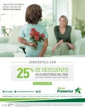 regala flores a mama DESCUENTOS floristerias - 30abr14