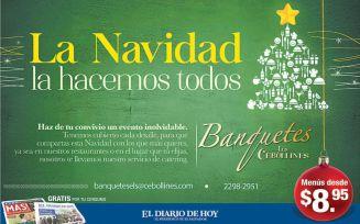 Banquete los cebollines para navidad y fin de anio - 02dic14