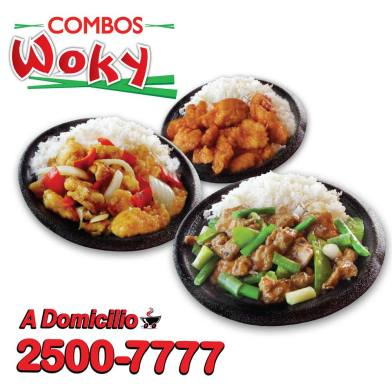 Combos WOKY de china wok SV - 18feb15