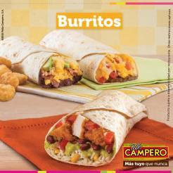 Mexican style BURRITOS pollo campero