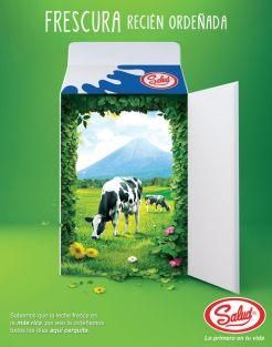 SALUD La frescura de la leche recien ordenada