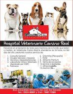 Hospital veterinario CANINO REAL el salvador