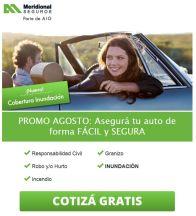 Meridional de seguros parte de AIG