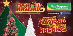 Llegaron los precios de navidad 2015 a la maxi despensa