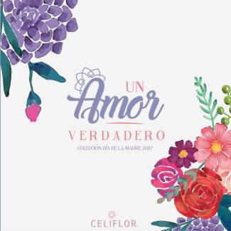 CELIFLOR Catalogo de arreglos florales para mama 2017