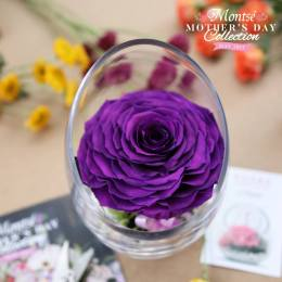 ROSAS preservadas en base de vidri floristeria MONTSE