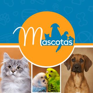 Guia de ofertas para mascotas de la despensa de don juan AGOSTO 2017