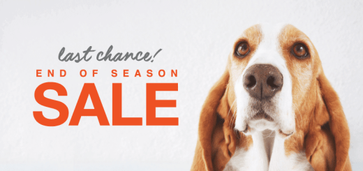 Discounts END oF SEASON hush puppies 2019