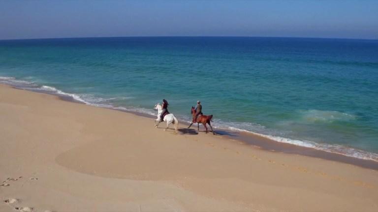 Cavalos na Praia – Escapadinha