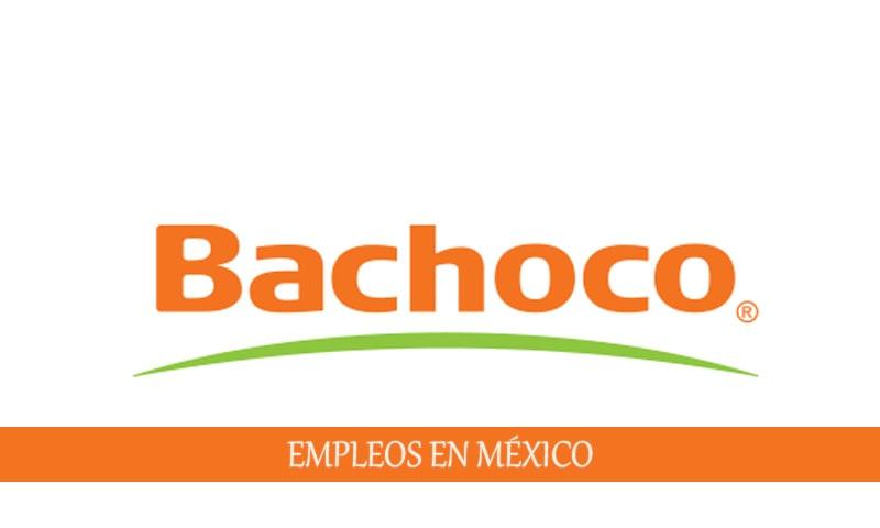 Empleos disponibles en Bachoco para personal sin experiencia