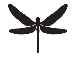 Dragonfly Bug Insect – Vinyl Decal Sticker – Multiple Colors & Sizes – ebn2910