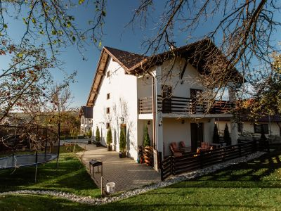 Beautiful Family Home With Gorgeous Garden For Sale In Sibiu, Cisnadie(Heltau)