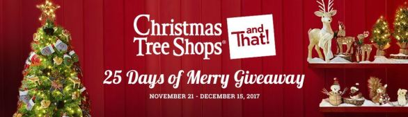 25 Days of Merry Giveaway 2017