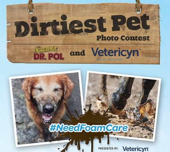 Dr. Pol and Vetericyn NeedFoamCare Contest
