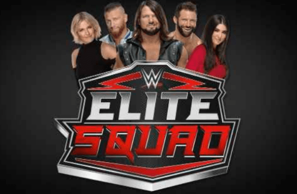 WWE Elite Squad Survivor Series Sweepstakes