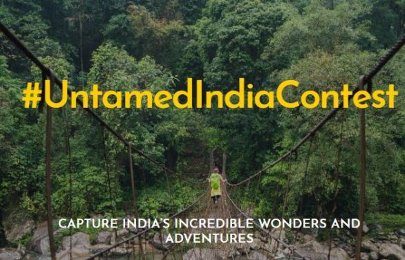 National Geographic Untamed India Contest