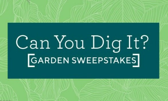 QVC-Can-You-Dig-It-Garden-Sweepstakes