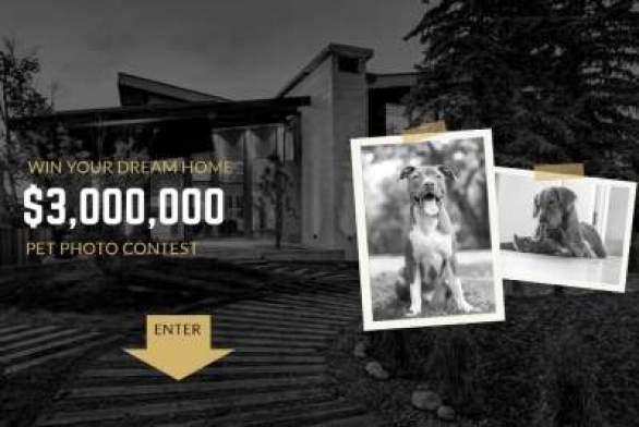 BoldStok-Photo-Contest