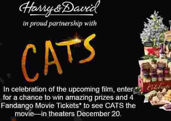 HarryandDavid-Cats-Sweepstakes