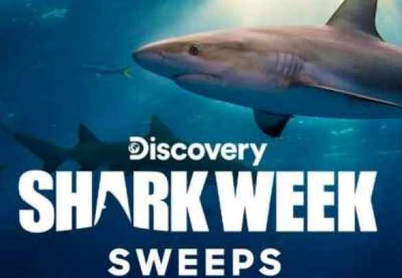 Discovery-shark-week-sweepstakes